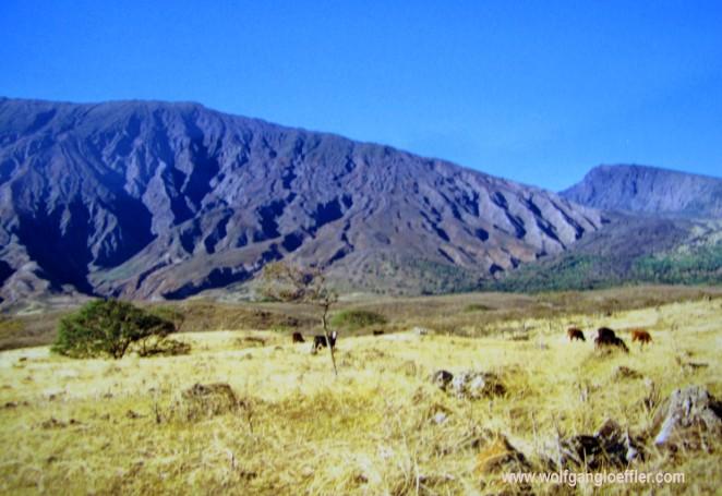 Steppe vor Bergen an Maui's Südküste