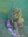 Luftaufnahme einer Scheune mit Bäumen
