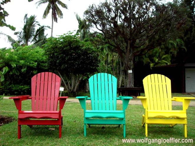Deck Chairs in a typical garden