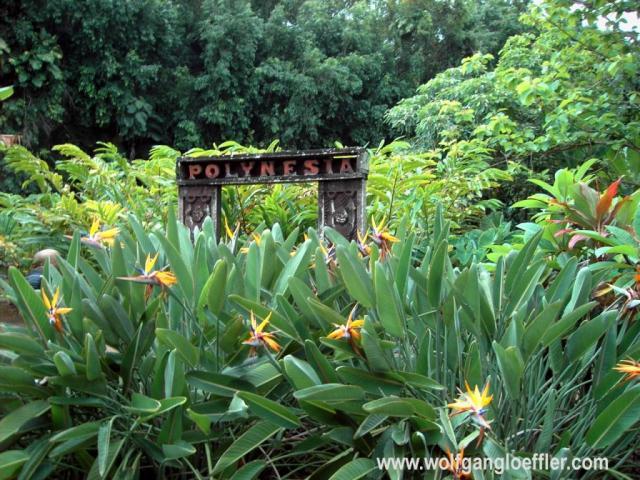 Polynesien Zeichen zwischen Blumen
