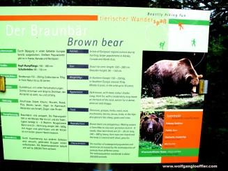 Erläuterungen zu Braunbären