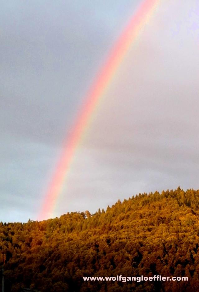 rainbow over a hill
