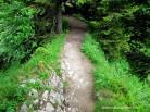 21-Schmaler Gratweg