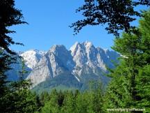 Alpspitze mit baumrahmen