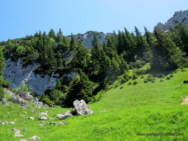 Sattel unterhalb des Gipfels