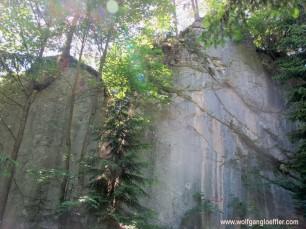 IMG_6460-felsbrocken im Wald