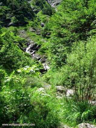 waterfall in the Wolfsschlucht