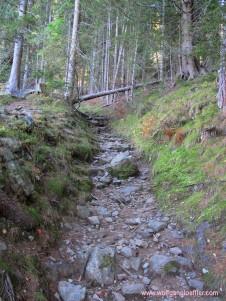 Pfad am Aufstieg zum Mirnock