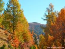Blick auf den Gipfel des Mirnock