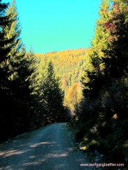 Weg beim Abstieg