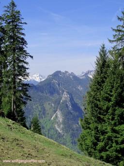 043-bergpanorama mit bäumen