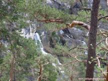 Quelle des Kuhfluchtwasserfalls.