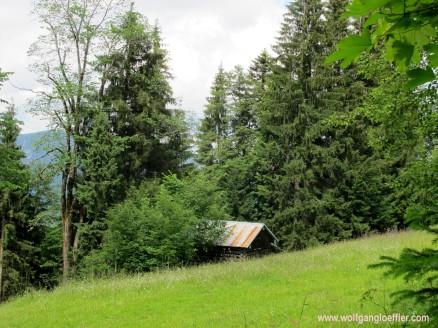 173-hütte im Wald