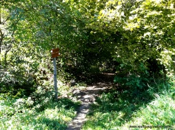 Zugang Talweg nach Vals