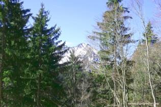Blick auf eine nahen Gipfel