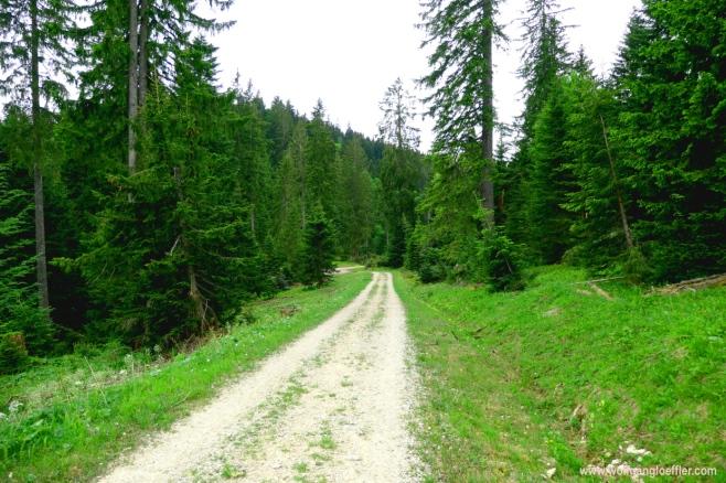 Weg Richtung Lenggries