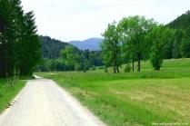 122.-hirschbachtal