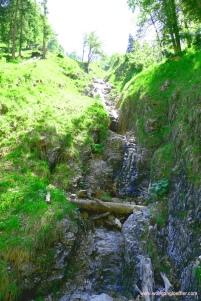 Zufluss zum Krottenbach